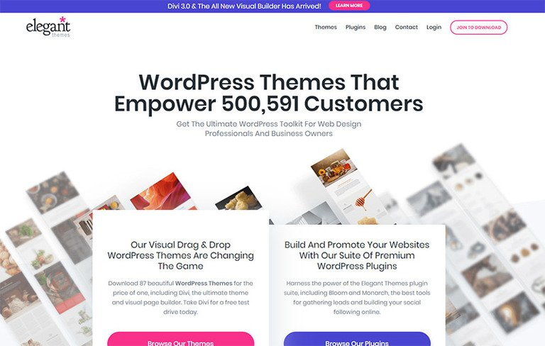 Review of the WordPress Themes and Plugins from Elegant Themes