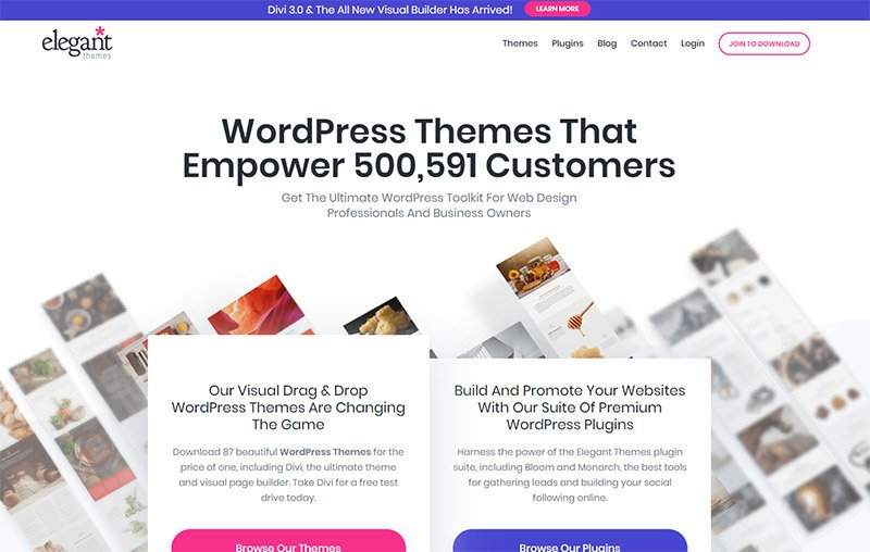 Promotion  WordPress Themes Elegant Themes