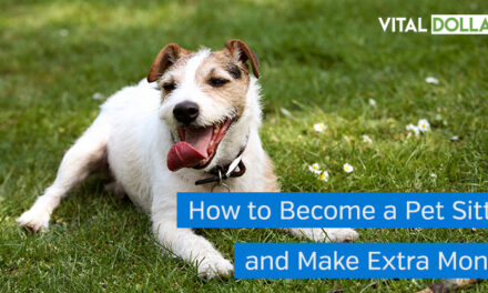 How to Become a Pet Sitter and Make Extra Money
