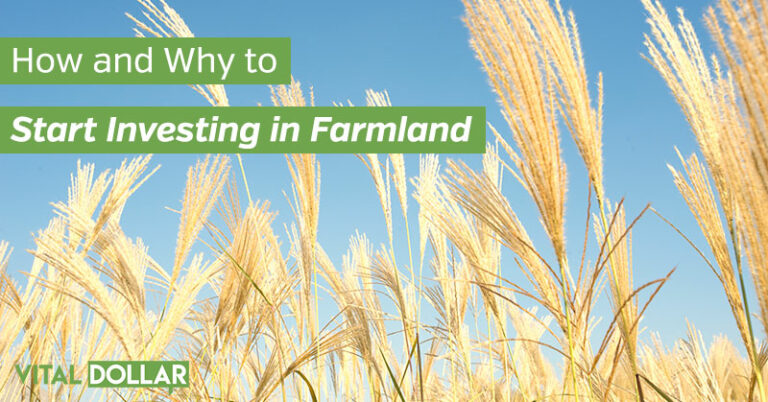 How and Why to Start Investing in Farmland