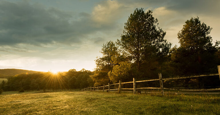 7 Insider Tips to Buy a Rural Property